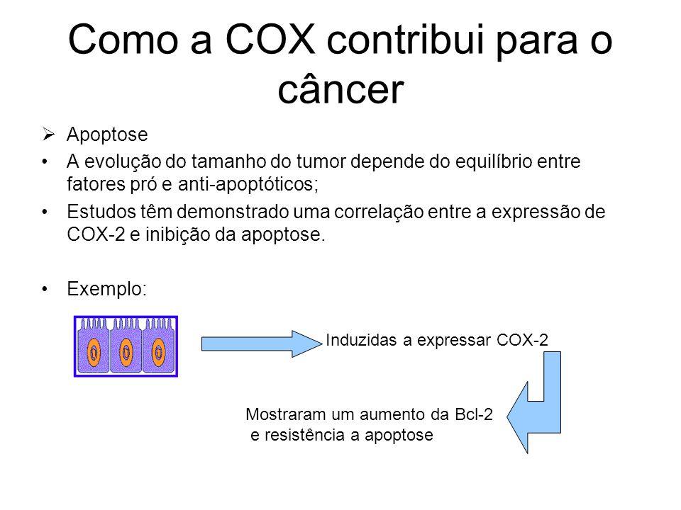 Como a COX contribui para o câncer  Apoptose A evolução do tamanho do tumor depende do equilíbrio entre fatores pró e anti-apoptóticos; Estudos têm d