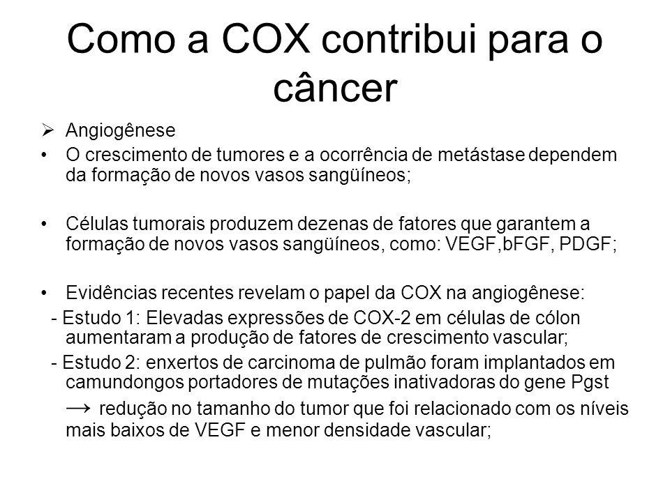 Como a COX contribui para o câncer  Angiogênese O crescimento de tumores e a ocorrência de metástase dependem da formação de novos vasos sangüíneos;