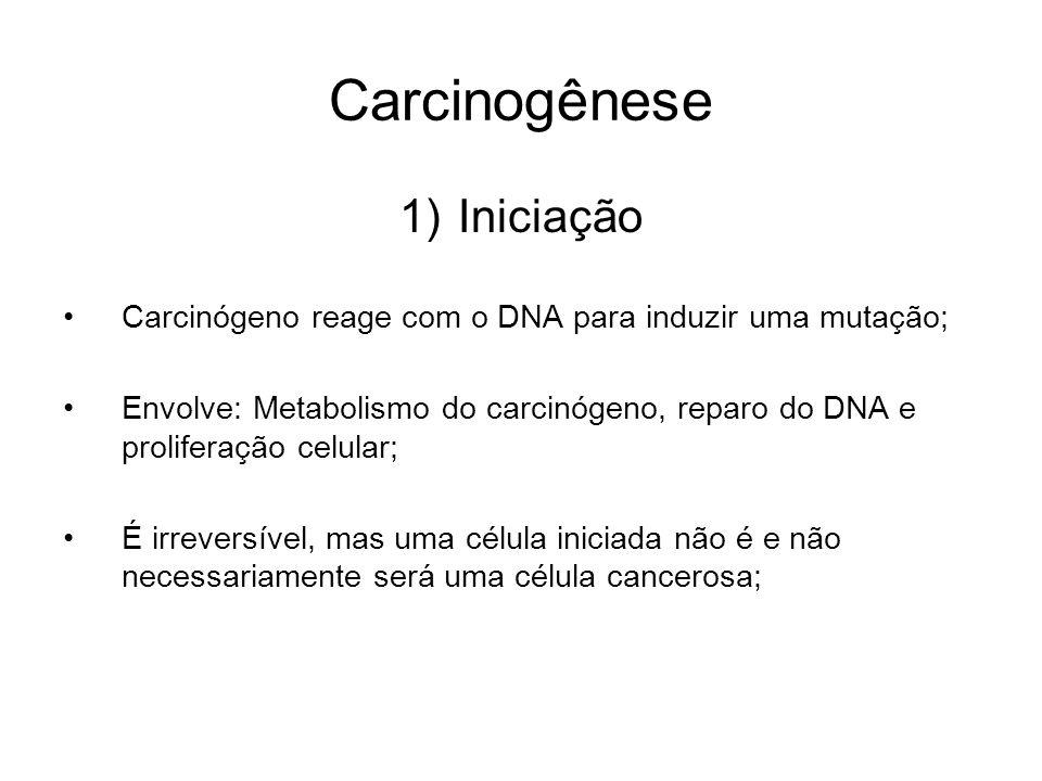 Carcinogênese 1)Iniciação Carcinógeno reage com o DNA para induzir uma mutação; Envolve: Metabolismo do carcinógeno, reparo do DNA e proliferação celu