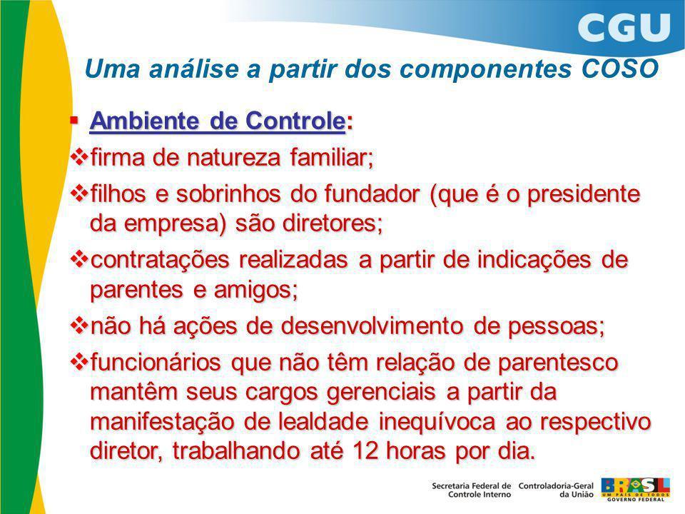  Ambiente de Controle:  firma de natureza familiar;  filhos e sobrinhos do fundador (que é o presidente da empresa) são diretores;  contratações r