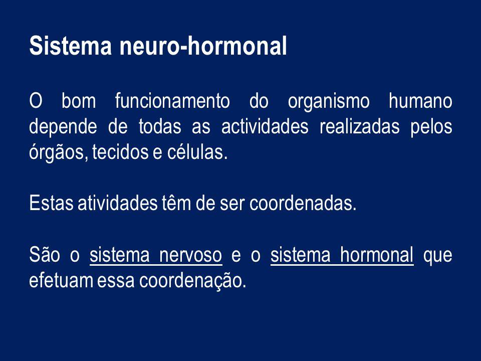 Coordenação nervosa O meio e a atividade nervosa ESTÍMULOS Sinais detetáveis, físicos e químicos que podem ser de natureza diversa, p.ex: luz, sons, variações de temperatura, substâncias químicas, entre outros.