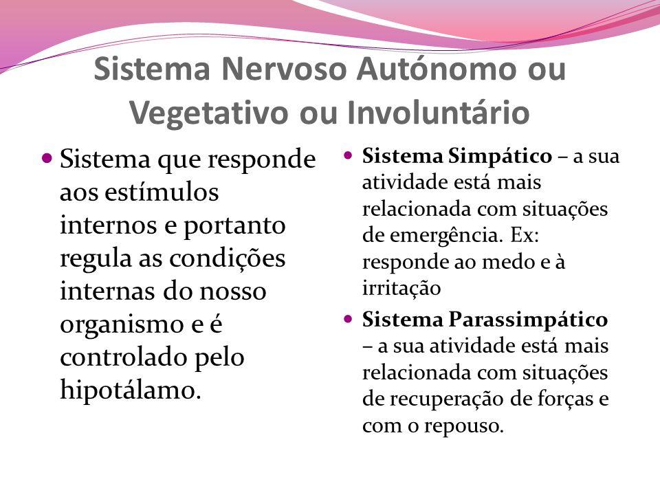 Sistema Nervoso Autónomo ou Vegetativo ou Involuntário Sistema que responde aos estímulos internos e portanto regula as condições internas do nosso organismo e é controlado pelo hipotálamo.