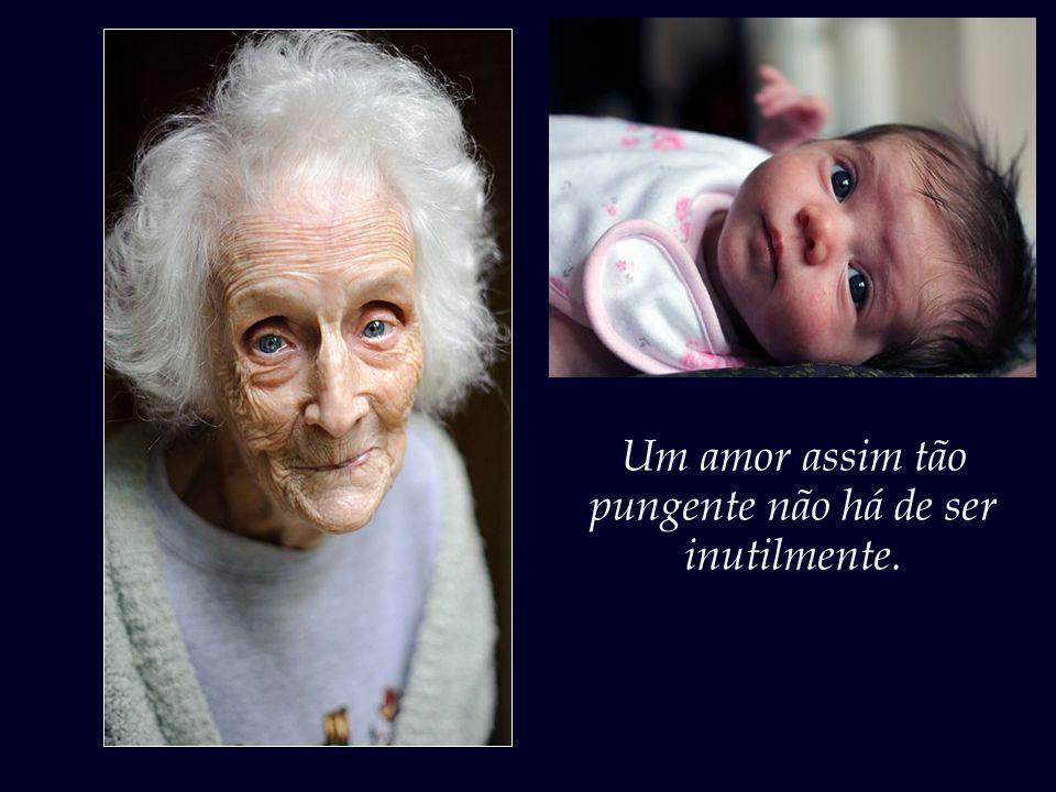 Por sorte, dizem que algo do olhar das gerações que passam no olhar das gerações que sucedem permanece.