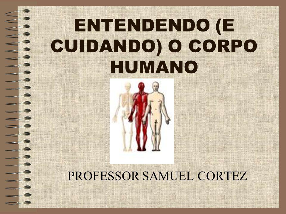ENTENDENDO (E CUIDANDO) O CORPO HUMANO PROFESSOR SAMUEL CORTEZ