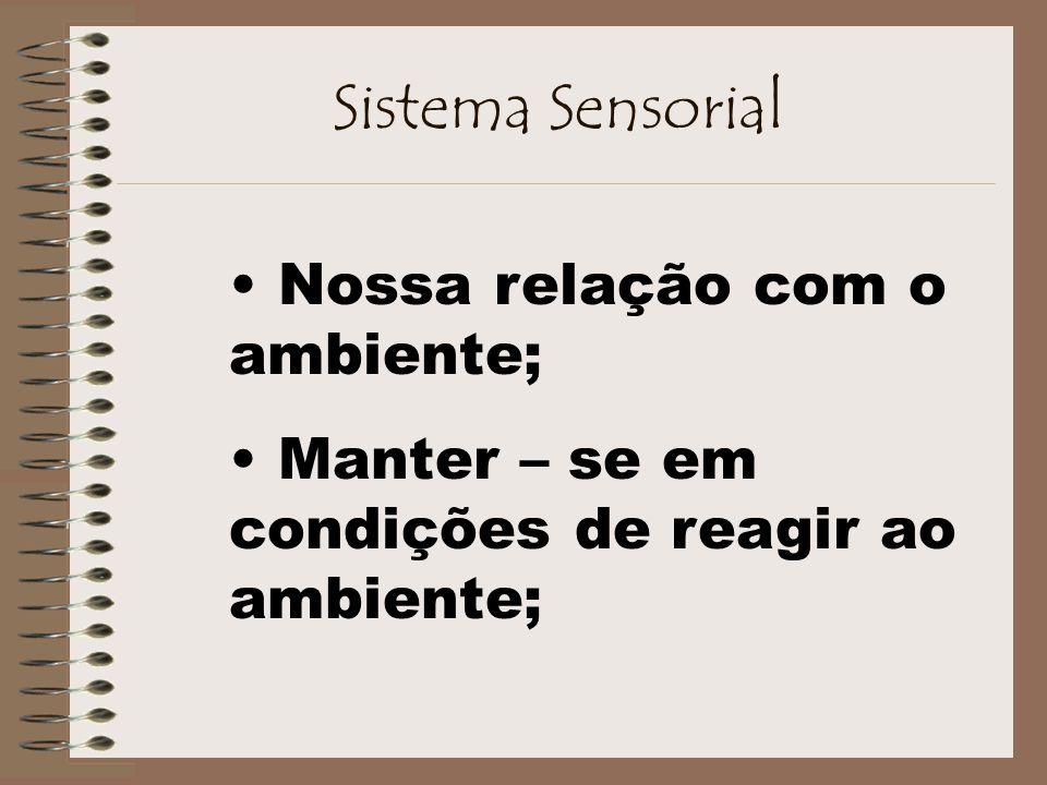 Sistema Sensorial Nossa relação com o ambiente; Manter – se em condições de reagir ao ambiente;