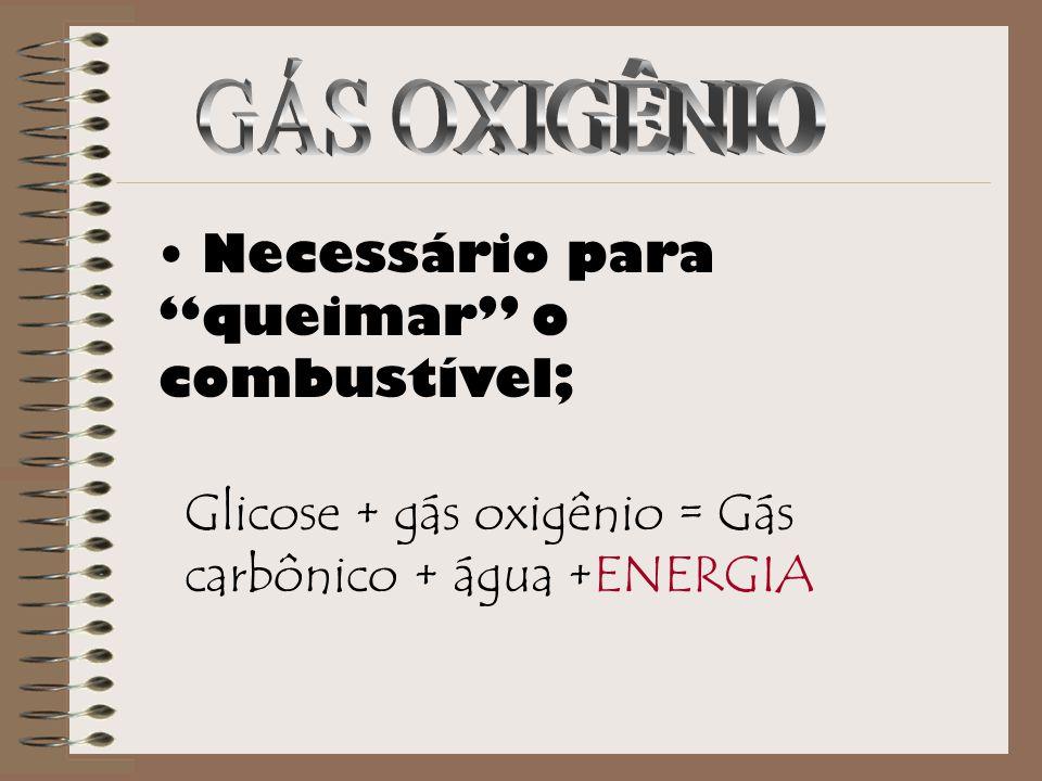 """Necessário para """"queimar"""" o combustível; Glicose + gás oxigênio = Gás carbônico + água +ENERGIA"""