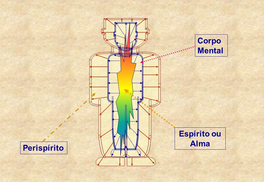 """O CORPO MENTAL  Segundo André Luiz, no livro Evolução em Dois Mundos, """"o corpo espiritual retrata em si o corpo mental que lhe preside a formação"""". D"""