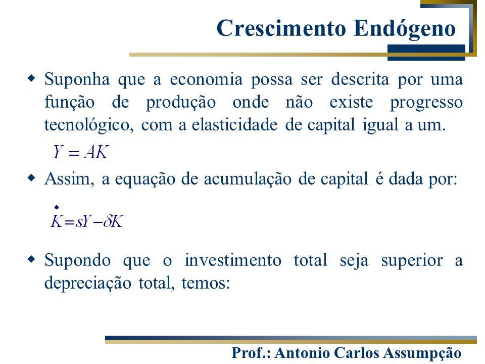 Prof.: Antonio Carlos Assumpção  Suponha que a economia possa ser descrita por uma função de produção onde não existe progresso tecnológico, com a el