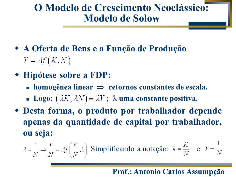 Prof.: Antonio Carlos Assumpção  A Oferta de Bens e a Função de Produção  Hipótese sobre a FDP: homogênea linear  retornos constantes de escala. Lo