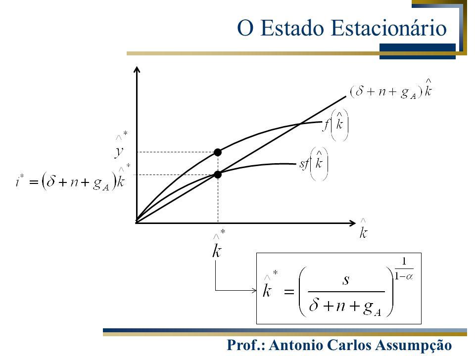 Prof.: Antonio Carlos Assumpção O Estado Estacionário