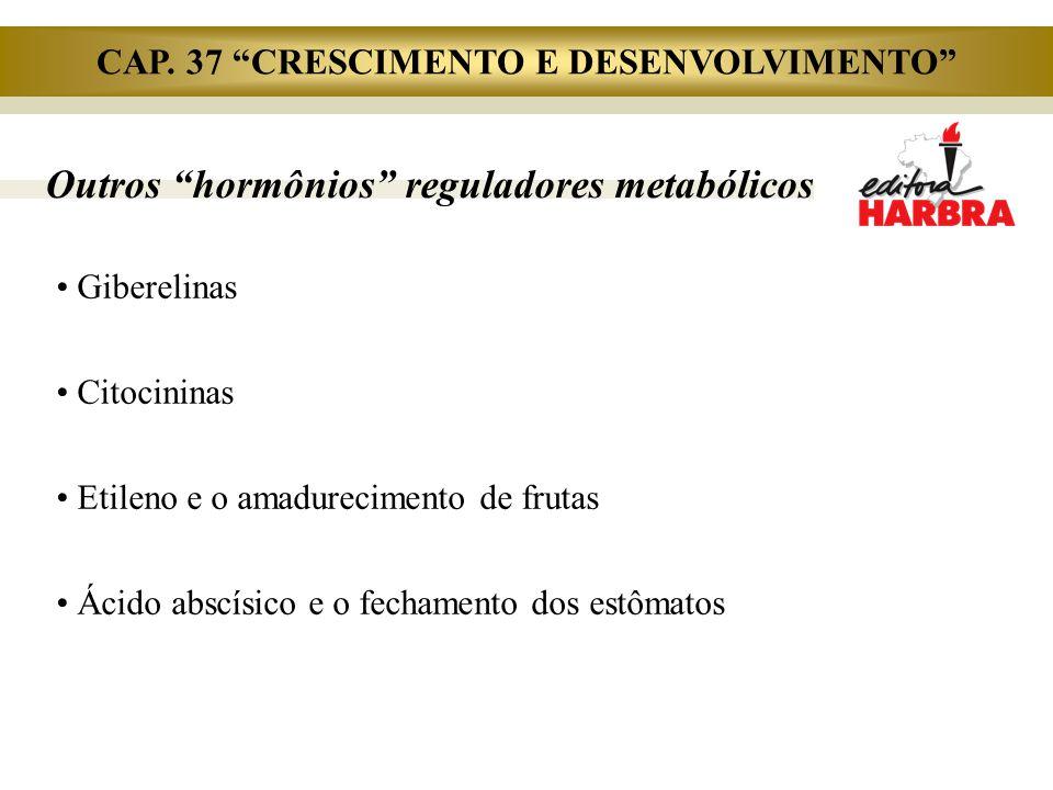"""Giberelinas Citocininas Etileno e o amadurecimento de frutas Ácido abscísico e o fechamento dos estômatos Outros """"hormônios"""" reguladores metabólicos C"""