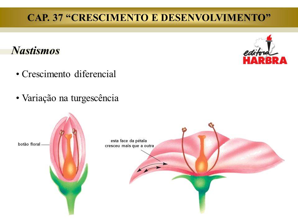 """Nastismos Crescimento diferencial Variação na turgescência botão floral esta face da pétala cresceu mais que a outra CAP. 37 """"CRESCIMENTO E DESENVOLVI"""