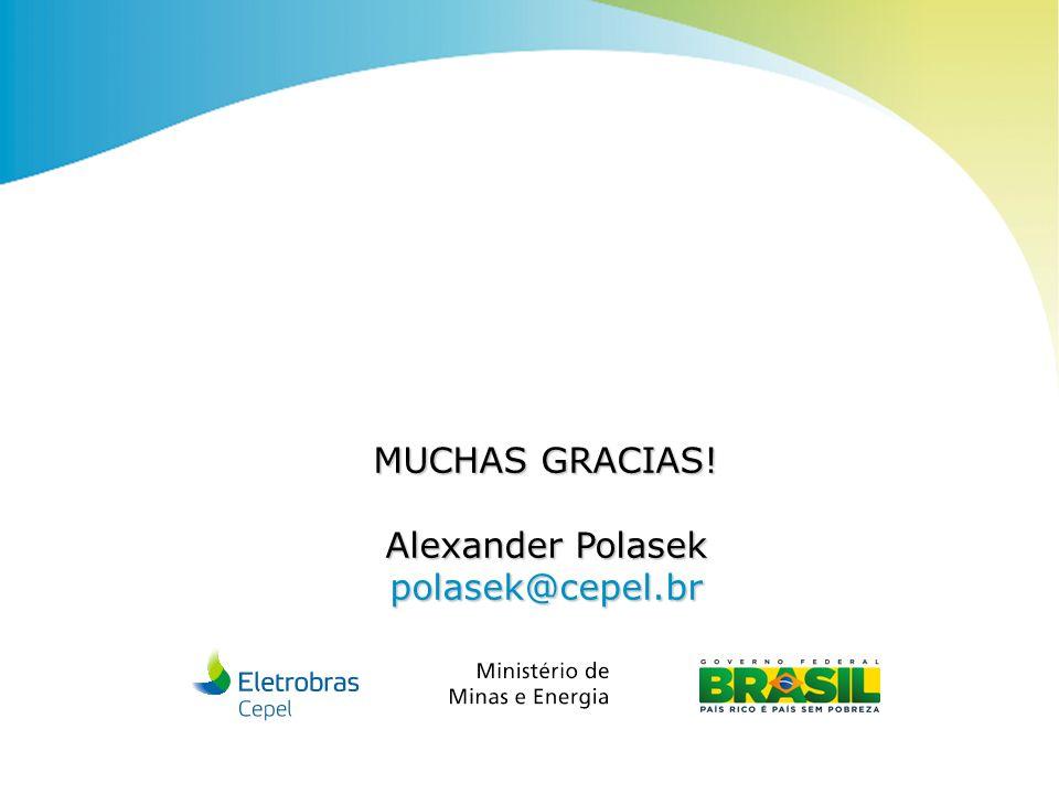 Centro de Pesquisas de Energia Elétrica - CEPELXIV ERIAC | 2011 MUCHAS GRACIAS! Alexander Polasek polasek@cepel.br