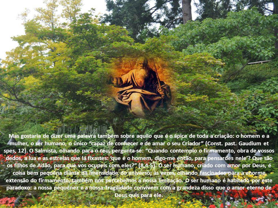 A verdade fundamental que os relatos de Gênesis nos revelam é que o mundo não é um conjunto de forças entre conflitantes, mas tem a sua origem e a sua