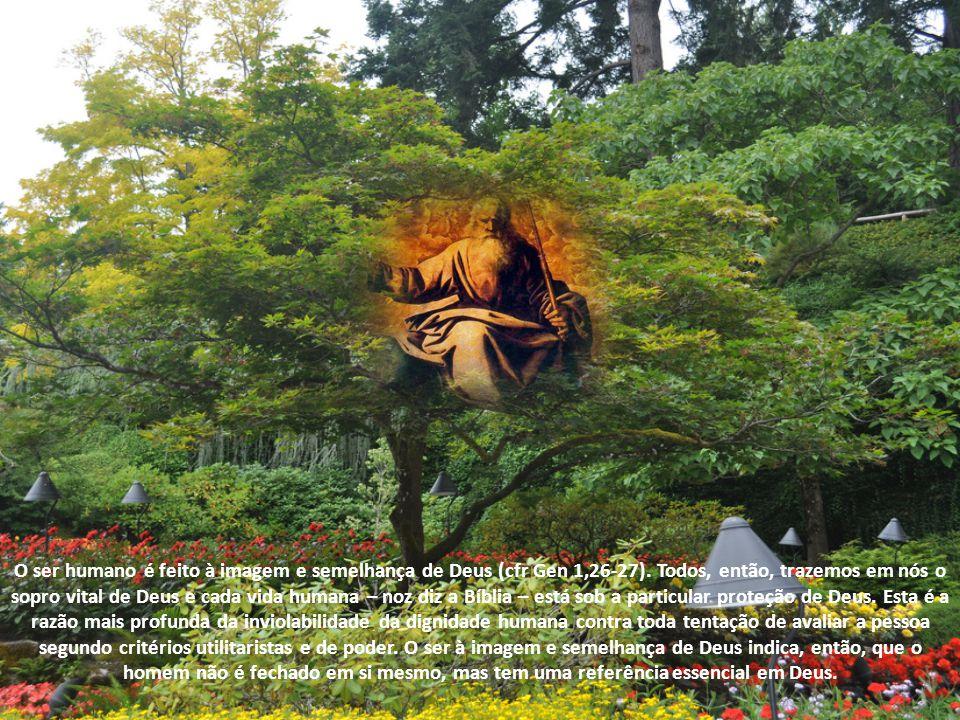 Os relatos da criação no Livro do Gênesis nos introduzem também neste misterioso âmbito, ajudando-nos a conhecer o projeto de Deus para o homem. Antes
