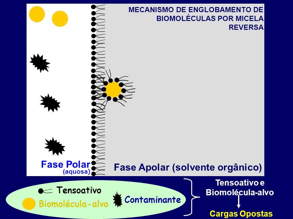 Fase Polar (aquosa ) Fase Apolar (solvente orgânico) Biomolécula-alvo Tensoativo Contaminante MECANISMO DE ENGLOBAMENTO DE BIOMOLÉCULAS POR MICELA REVERSA Tensoativo e Biomolécula-alvo Cargas Opostas