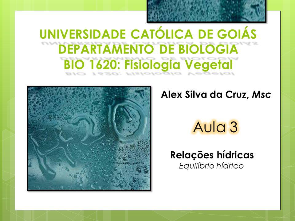 UNIVERSIDADE CATÓLICA DE GOIÁS DEPARTAMENTO DE BIOLOGIA BIO 1620: Fisiologia Vegetal Alex Silva da Cruz, Msc Relações hídricas Equilíbrio hídrico