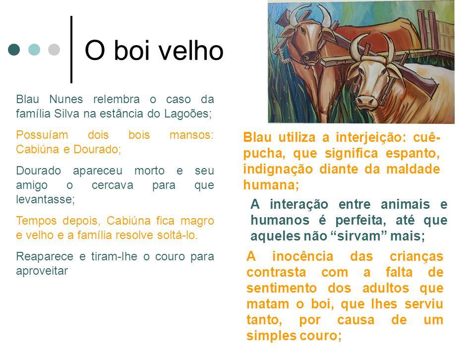 O boi velho Blau Nunes relembra o caso da família Silva na estância do Lagoões; Possuíam dois bois mansos: Cabiúna e Dourado; Dourado apareceu morto e