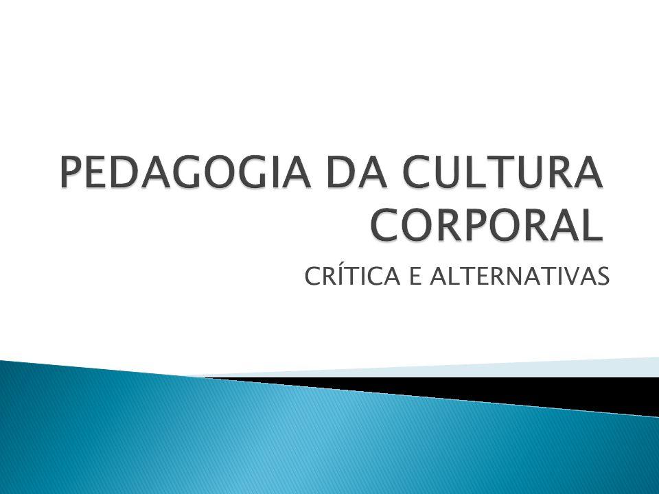  Quais as práticas e os artefatos relativos à cultura corporal existentes ou produzidos no bairro.