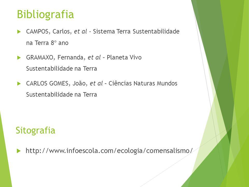Bibliografia  CAMPOS, Carlos, et al - Sistema Terra Sustentabilidade na Terra 8º ano  GRAMAXO, Fernanda, et al – Planeta Vivo Sustentabilidade na Te