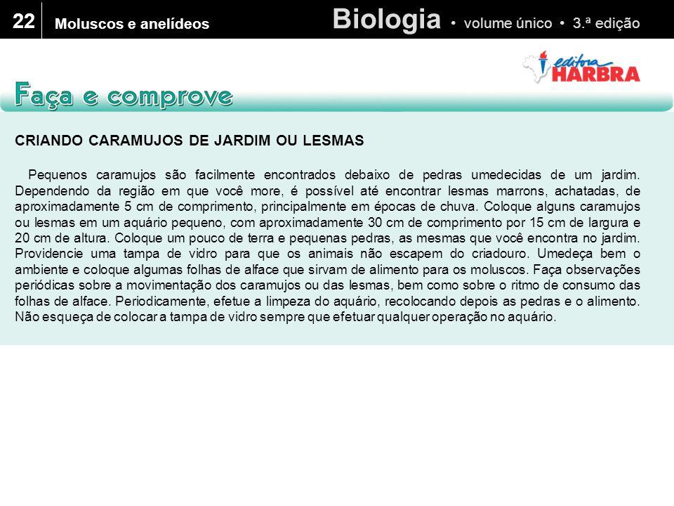 Biologia volume único 3.ª edição 22 Moluscos e anelídeos CRIANDO CARAMUJOS DE JARDIM OU LESMAS Pequenos caramujos são facilmente encontrados debaixo d