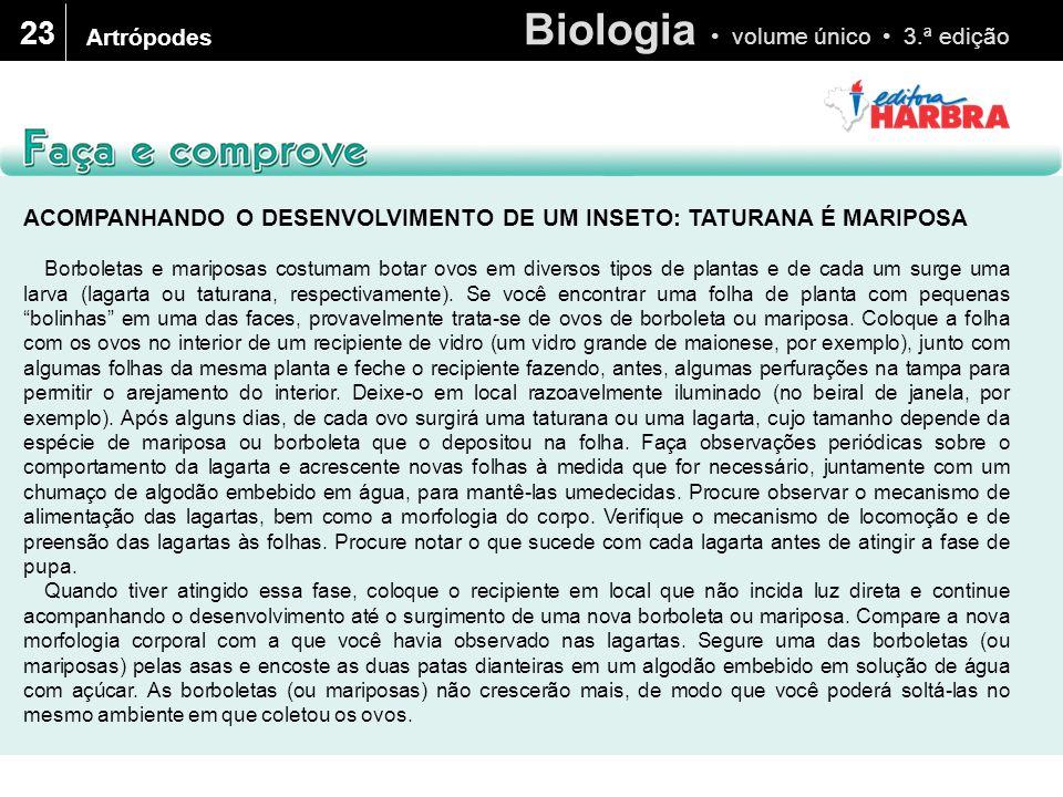 Biologia volume único 3.ª edição 23 Artrópodes ACOMPANHANDO O DESENVOLVIMENTO DE UM INSETO: TATURANA É MARIPOSA Borboletas e mariposas costumam botar