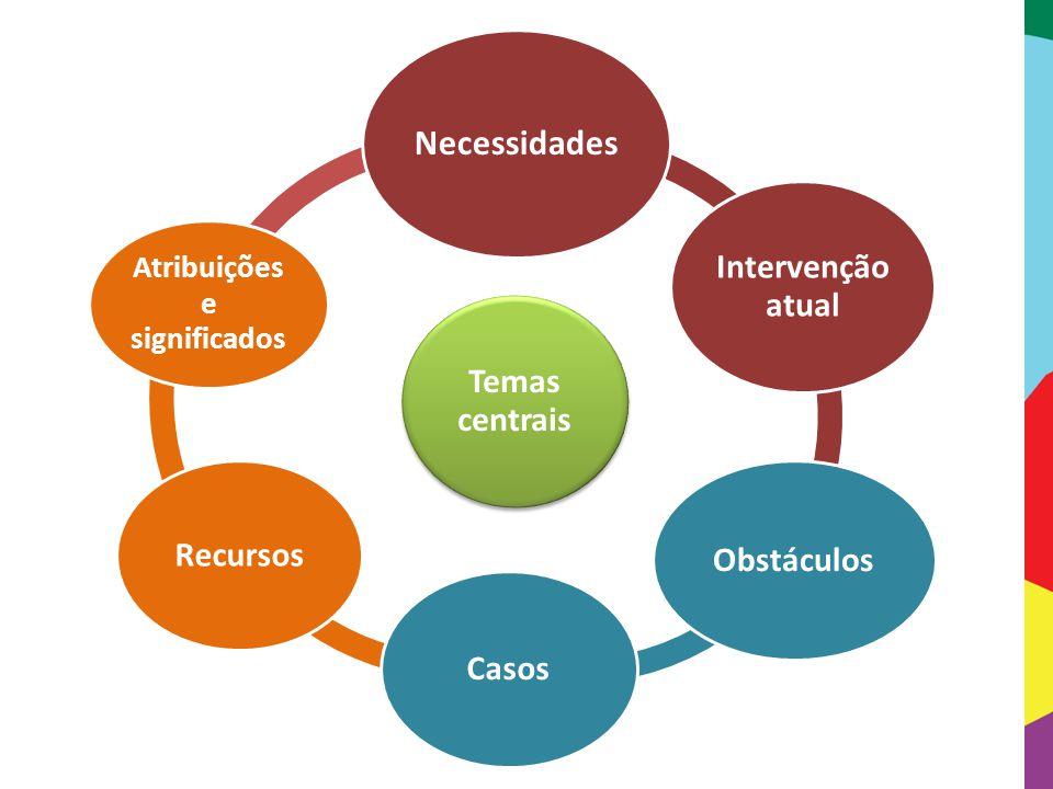 Temas centrais Necessidades Intervenção atual Obstáculos Casos Recursos Atribuições e significados