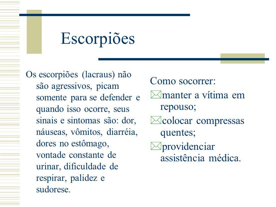 Escorpiões Os escorpiões (lacraus) não são agressivos, picam somente para se defender e quando isso ocorre, seus sinais e sintomas são: dor, náuseas,