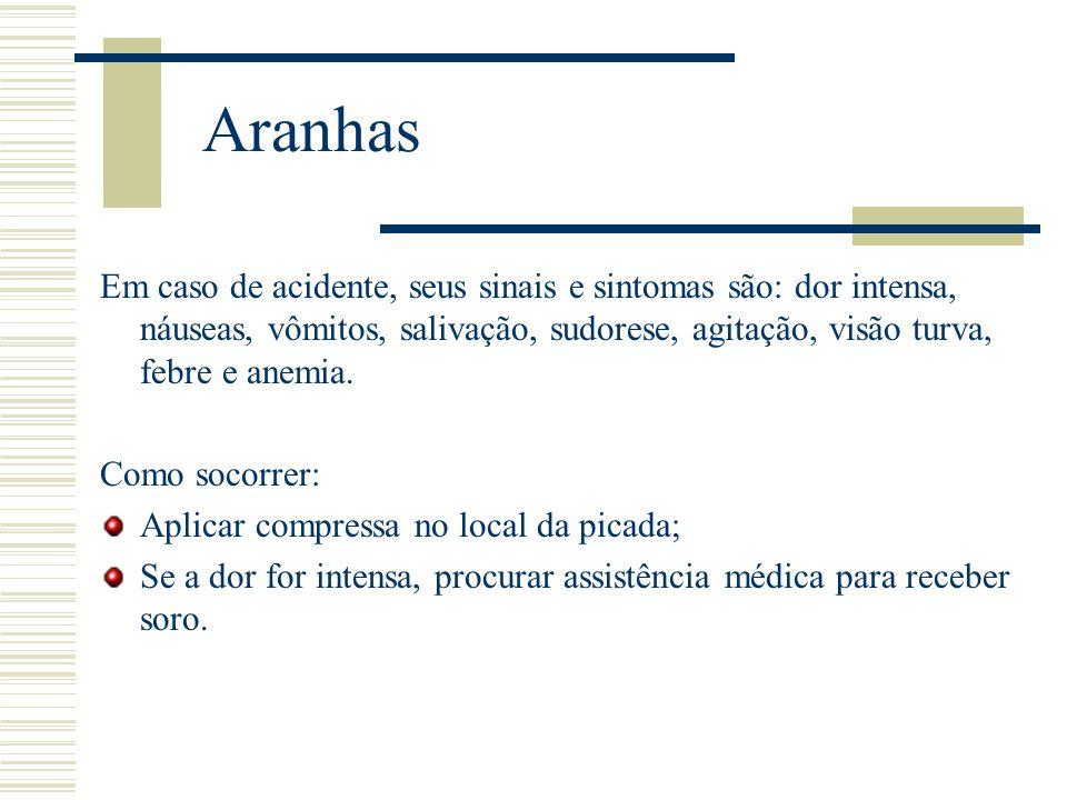 Aranhas Em caso de acidente, seus sinais e sintomas são: dor intensa, náuseas, vômitos, salivação, sudorese, agitação, visão turva, febre e anemia. Co