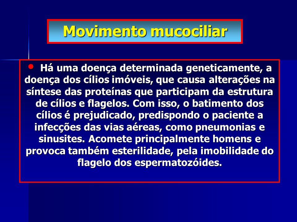 Movimento mucociliar Há uma doença determinada geneticamente, a doença dos cílios imóveis, que causa alterações na síntese das proteínas que participa