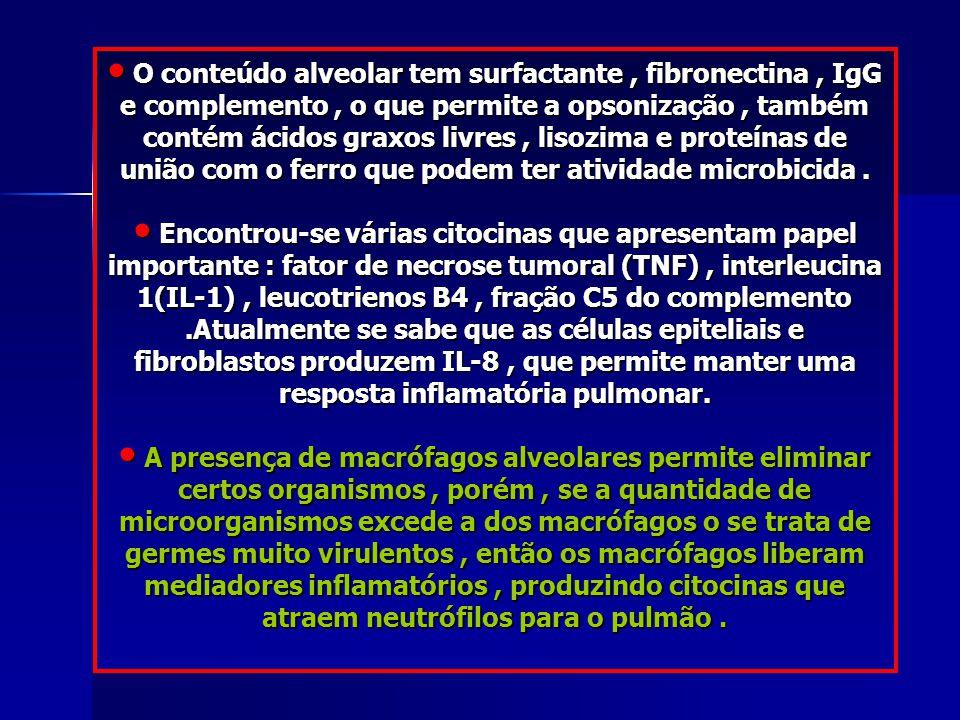 O conteúdo alveolar tem surfactante, fibronectina, IgG e complemento, o que permite a opsonização, também contém ácidos graxos livres, lisozima e prot