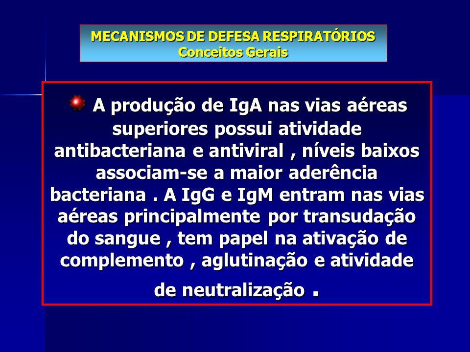 A produção de IgA nas vias aéreas superiores possui atividade antibacteriana e antiviral, níveis baixos associam-se a maior aderência bacteriana. A Ig