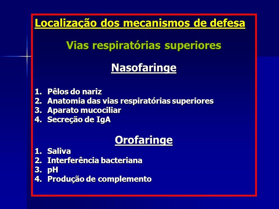 Localização dos mecanismos de defesa Vias respiratórias superiores Nasofaringe 1. Pêlos do nariz 2. Anatomia das vias respiratórias superiores 3. Apar