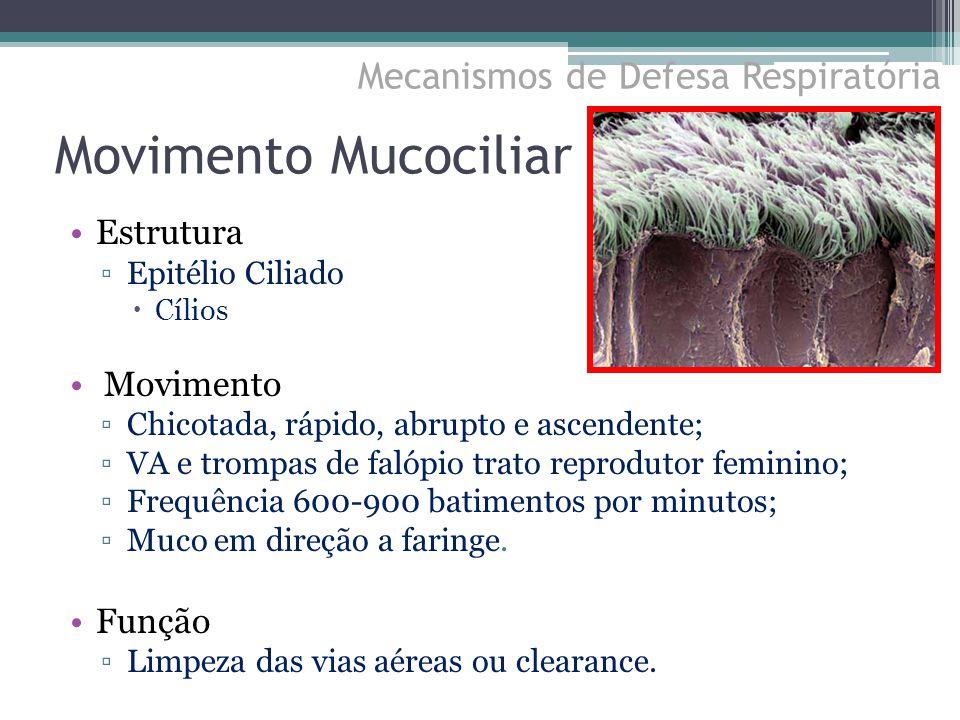 Estrutura ▫Epitélio Ciliado  Cílios Movimento ▫Chicotada, rápido, abrupto e ascendente; ▫VA e trompas de falópio trato reprodutor feminino; ▫Frequênc