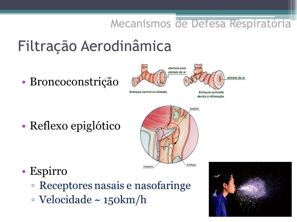 Filtração Aerodinâmica Broncoconstrição Reflexo epiglótico Espirro ▫Receptores nasais e nasofaringe ▫Velocidade ~ 150km/h Mecanismos de Defesa Respira