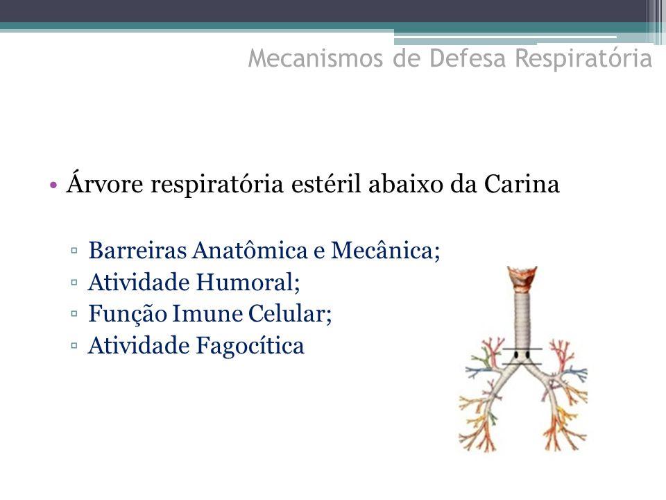 Árvore respiratória estéril abaixo da Carina ▫Barreiras Anatômica e Mecânica; ▫Atividade Humoral; ▫Função Imune Celular; ▫Atividade Fagocítica Mecanis