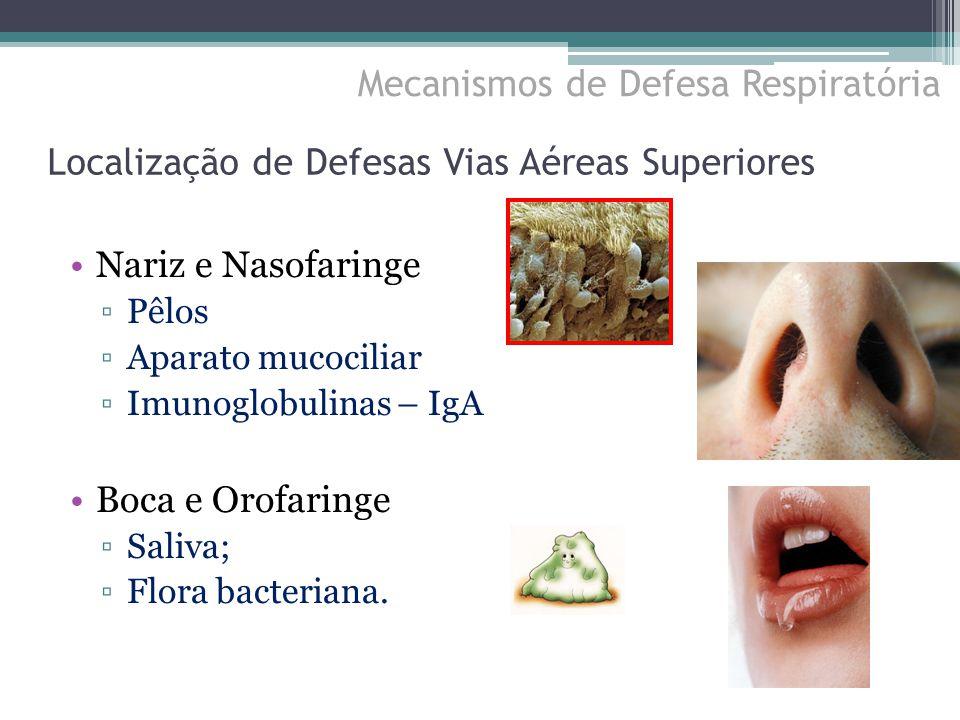 Localização de Defesas Vias Aéreas Superiores Nariz e Nasofaringe ▫Pêlos ▫Aparato mucociliar ▫Imunoglobulinas – IgA Boca e Orofaringe ▫Saliva; ▫Flora