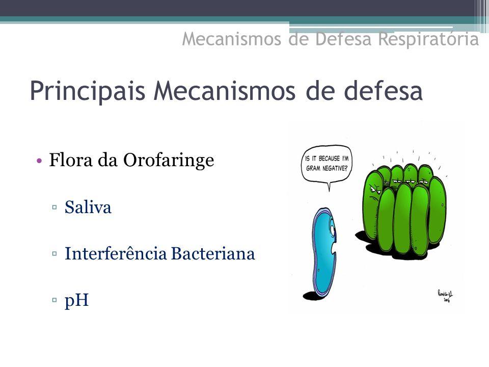 Principais Mecanismos de defesa Flora da Orofaringe ▫Saliva ▫Interferência Bacteriana ▫pH Mecanismos de Defesa Respiratória
