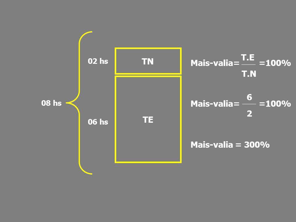 TN TE 02 hs 06 hs 08 hs Mais-valia= =100% Mais-valia = 300% T.E T.N 6 2