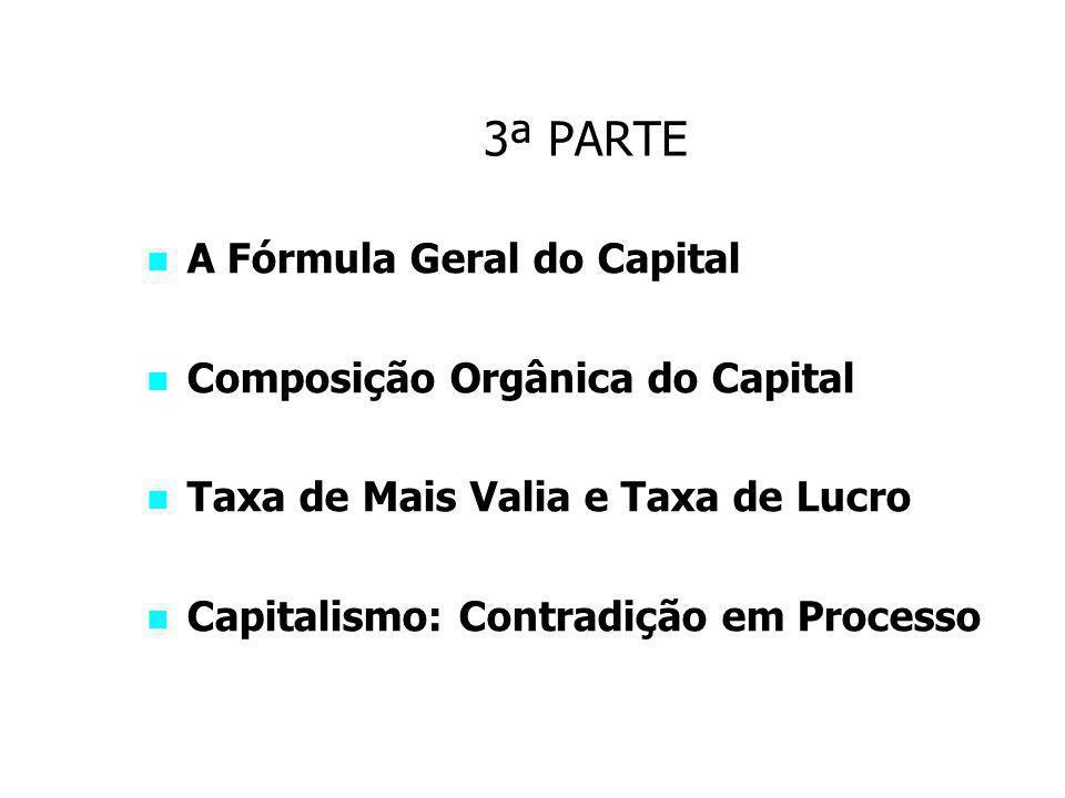 3ª PARTE A Fórmula Geral do Capital Composição Orgânica do Capital Taxa de Mais Valia e Taxa de Lucro Capitalismo: Contradição em Processo