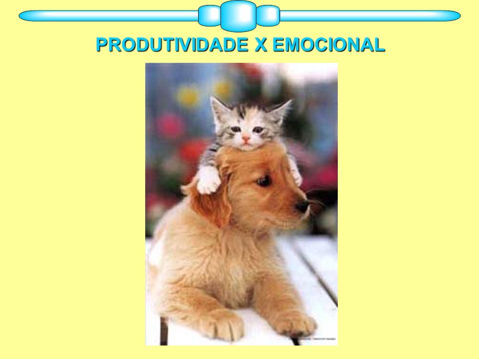 PRODUTIVIDADE X EMOCIONAL