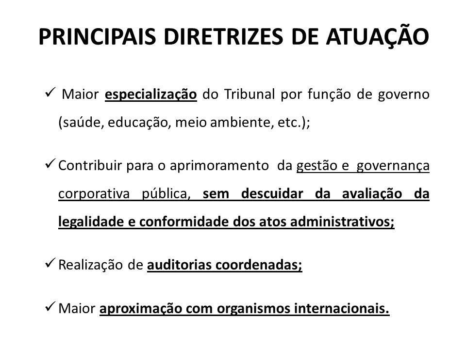 PRINCIPAIS DIRETRIZES DE ATUAÇÃO Maior especialização do Tribunal por função de governo (saúde, educação, meio ambiente, etc.); Contribuir para o apri