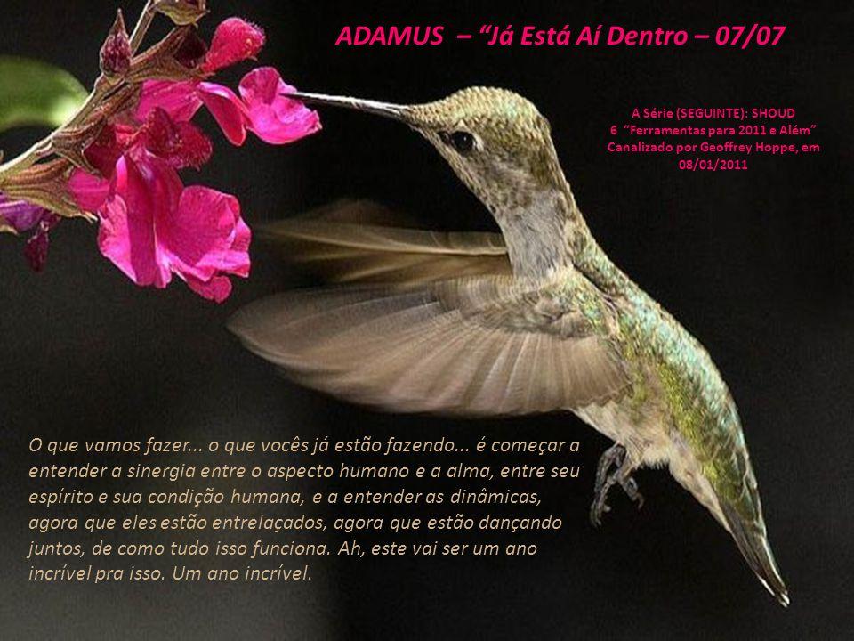 ADAMUS – Já Está Aí Dentro – 06/07 A Série (SEGUINTE): SHOUD 6 Ferramentas para 2011 e Além Canalizado por Geoffrey Hoppe, em 08/01/2011 Conseguem...