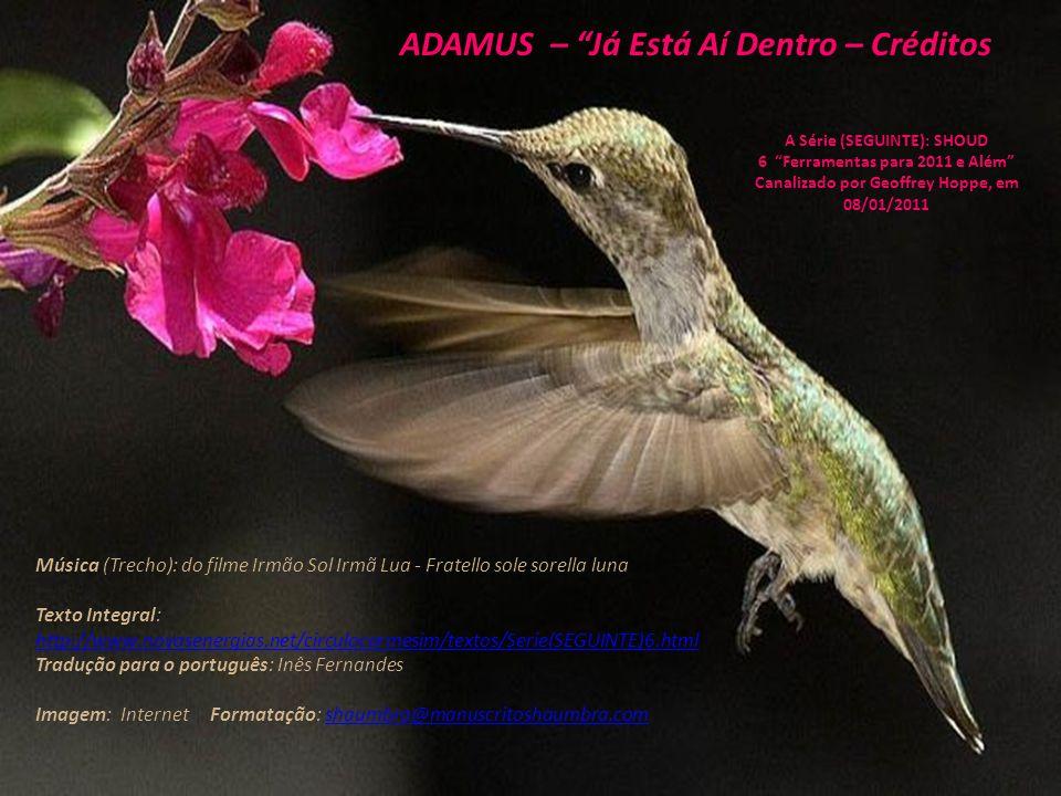 ADAMUS – Já Está Aí Dentro – 07/07 A Série (SEGUINTE): SHOUD 6 Ferramentas para 2011 e Além Canalizado por Geoffrey Hoppe, em 08/01/2011 O que vamos fazer...