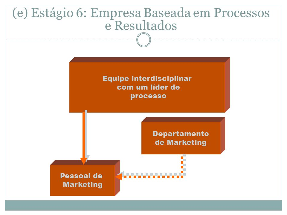 (e) Estágio 6: Empresa Baseada em Processos e Resultados Equipe interdisciplinar com um líder de processo Pessoal de Marketing Departamento de Marketing