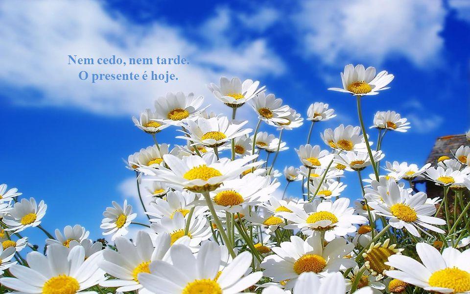 Texto: Chico Xavier Música: Richard Clayderman Formatação:bvbiavasconcellos@gmail.com http://comamoravidas.ning.com Biajova Slides Amor à vida