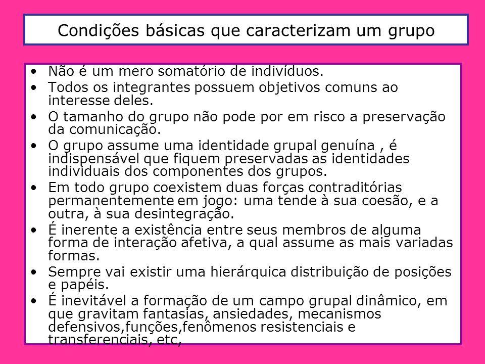 Condições básicas que caracterizam um grupo Não é um mero somatório de indivíduos. Todos os integrantes possuem objetivos comuns ao interesse deles. O