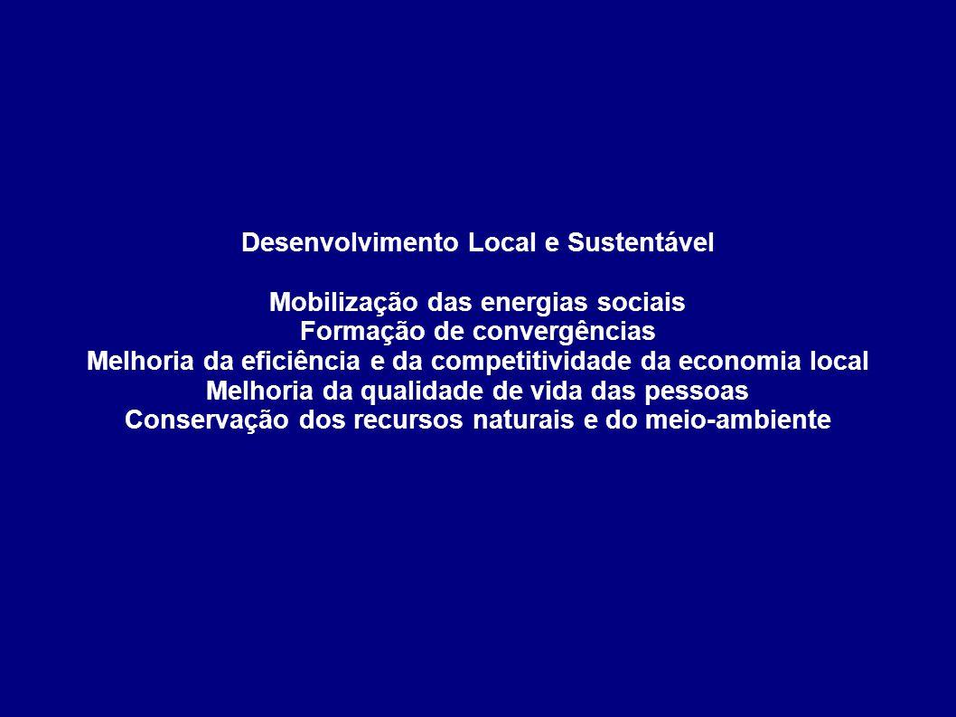 Desenvolvimento Local e Sustentável Mobilização das energias sociais Formação de convergências Melhoria da eficiência e da competitividade da economia
