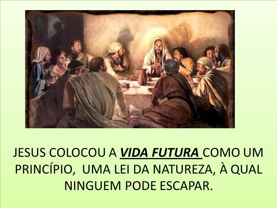 JESUS COLOCOU A VIDA FUTURA COMO UM PRINCÍPIO, UMA LEI DA NATUREZA, À QUAL NINGUEM PODE ESCAPAR.