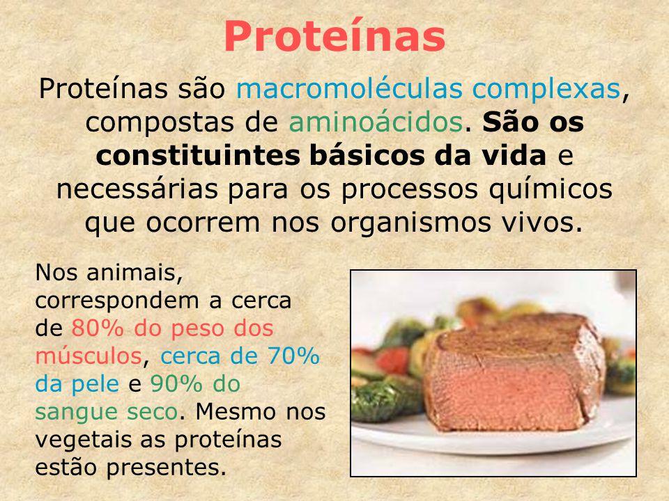 Proteínas são macromoléculas complexas, compostas de aminoácidos.